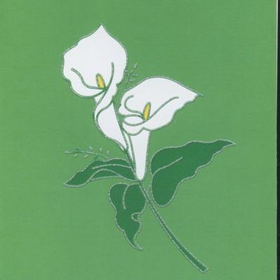 e02150-arums-with-thanks-3.jpg